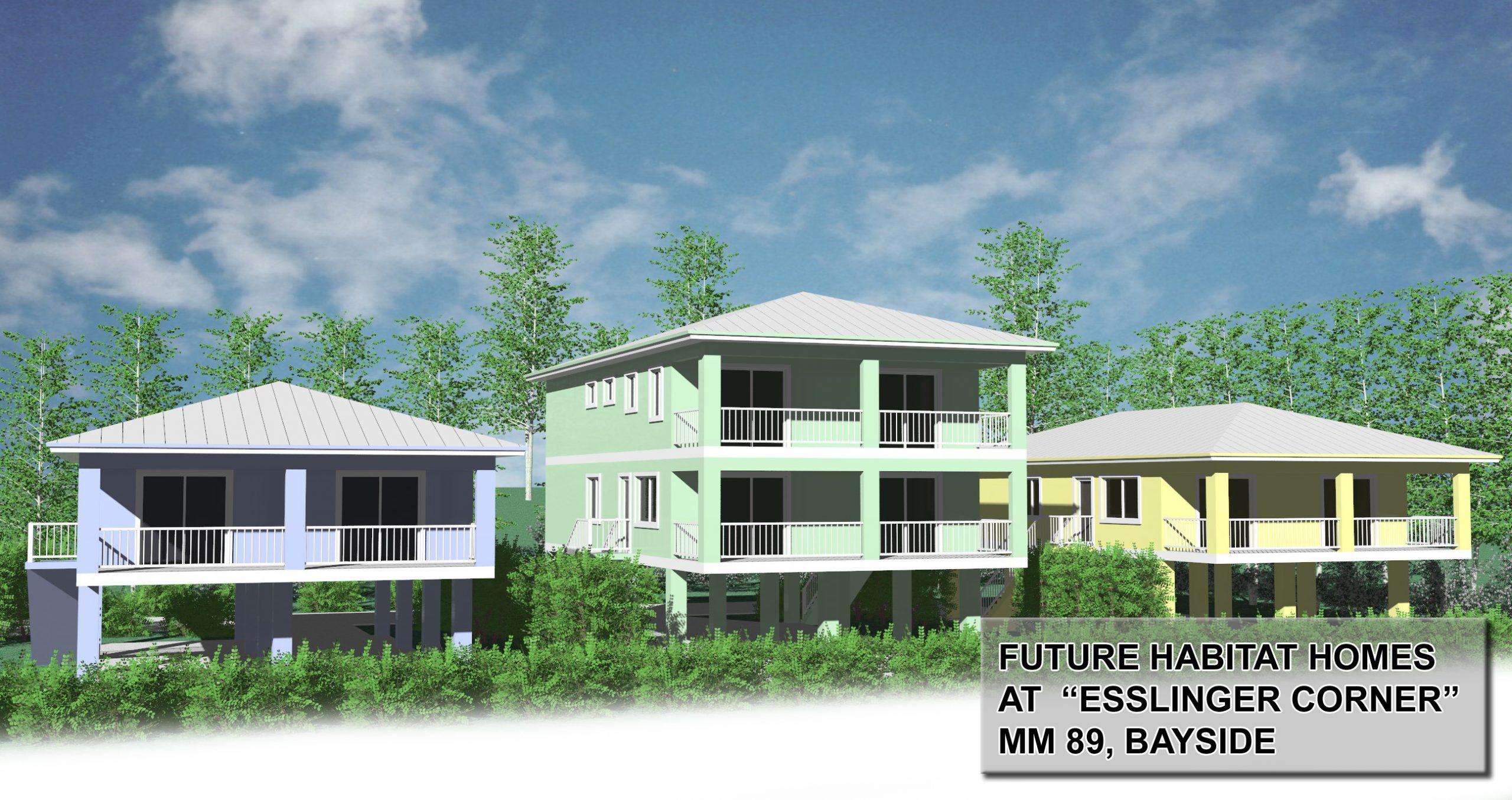 future homes rendering